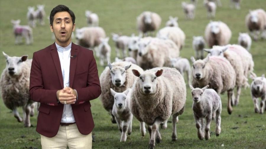 آزار و اذیت گوسفند نیمایی توسط آقای مجری/فیلترشکن ۱۲
