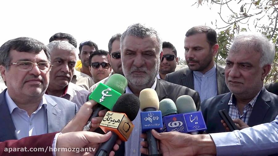 بازدید وزیر جهادکشاورزی از کانون های آلوده به آفت ملخ!
